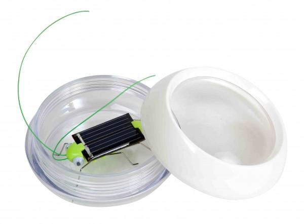 Grille Solar - in runder Kunststoffdose